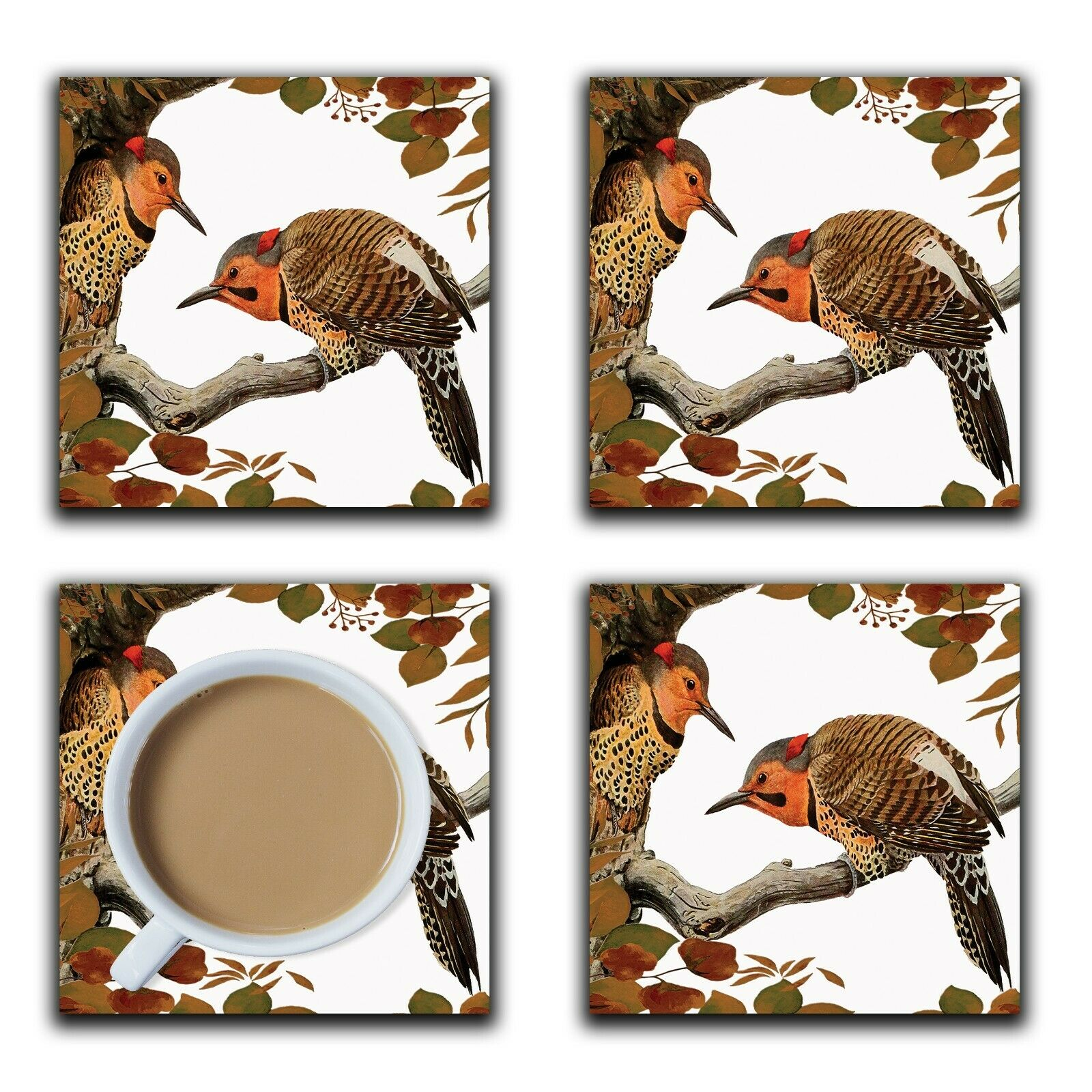 Embossi Printed Northern Flicker Bird, wood or ceramic tile, set of 4 Coasters